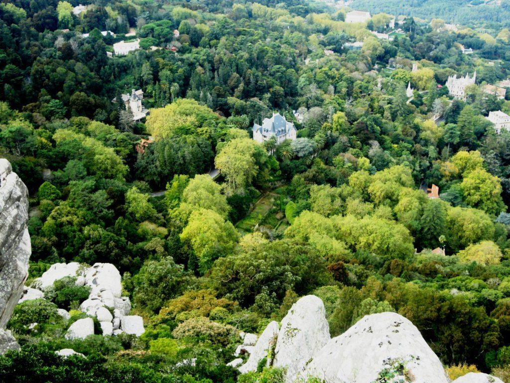 Вид с синтровских гор