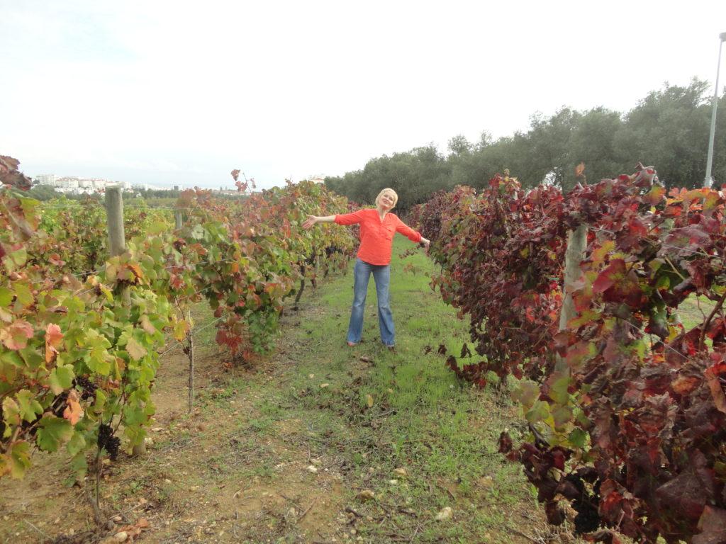 Вино и портвейн, причина номер 5